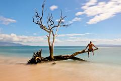AB3I0226A (Aaron Lynton) Tags: neutraldensity nd maui hawaii paradise tree ukumehame ukumehamelongexposure longexposure lyntonproductions canon ndfilter