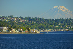 Rainier Above West Seattle (RobertCross1 (off and on)) Tags: a7rii alki alpha cascaderange cascades e55210mmf4563oss emount ilce7rm2 pacificnorthwest pugetsound seattle sony wa washington westseattle beach bluesky city fullframe glacier landscape mirrorless mountain snow telephoto trees volcano water windsurfing ferry