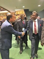 "Zimbabwe ROBERT GABRIEL MUGABE, President of Zimbabwe • <a style=""font-size:0.8em;"" href=""http://www.flickr.com/photos/146657603@N04/45792691064/"" target=""_blank"">View on Flickr</a>"