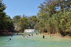 DP0Q3018 (gokselbt) Tags: chiapas aquaazul palenque