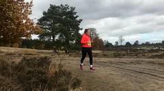haarlerbergloop 10 km (79)