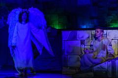 _DSC0470 (Carlo Granisso) Tags: musical church chiesa teatro theatre actor actress jesus sanfrancesco piece mask forzavenitegente maddalena altare animals animali ballo dancing bw blackandwhite torino turin nikon d7500 nikond7500