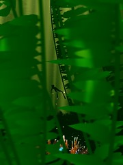Lost (xXSamirXx) Tags: abzu abzû giantsquid ue4 unrealengine4 reshade reshadeframework 505games