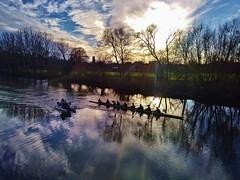 River rowers (explored 17 Jan 2019) (Sundornvic) Tags: river severn shrewsbury shropshire trees sun shine silhouette water reflections