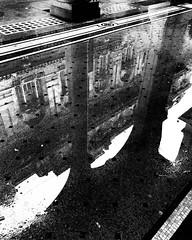 """Puddle"" (giannipaoloziliani) Tags: marble photooftheday city italia italy flickr skyline lightandshadow riflessi acqua pozzanghera genova genoa street downtown waterreflection streetphotography biancoenero dark darkness blackandwhite water reflections puddle iphonephotography iphone"