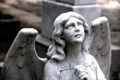 Anglų lietuvių žodynas. Žodis angel reiškia n angelas lietuviškai.
