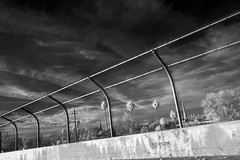 paradis perdu (Robert Couse-Baker) Tags: fence infrared 365 2018