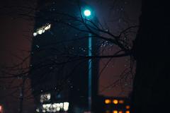 Cold Night (ewitsoe) Tags: winter street city night bokeh wet rain snow weather ewitsoe architecture buildings poznan poland evening travel cityscape