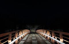 Saint Croix State Park at Night - Bridge Over Sand Creek (Tony Webster) Tags: minnesota saintcroixstatepark sandcreek stcroixstatepark bridge headlights night winter