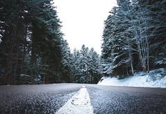 Sur les route enneigées (mick42m) Tags: snow neige tree winter road canon 77d canonfrance loire nature
