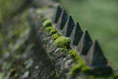 The Pyramids... (Jess Feldon) Tags: sonya7 pyramids tetbury bokeh dof lookslikefilm jessfeldon moss wall hff fencefriday