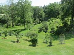 Katie Osborne Lilac Collection (D. S. Hałas) Tags: halas hałas canada ontario wentworthcounty hamilton royalbotanicalgardens botanicalgarden arboretum katieosbornelilaccollection