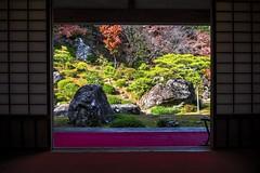 Framed Garden, Chikurin-ji (DanÅke Carlsson) Tags: japan japanese kochi shikoku chikurinji temple garden veiw religion traditional stone green autumn fall