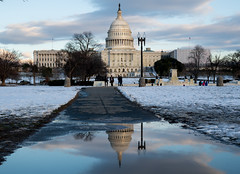 Capitol reflection (vpickering) Tags: reflections dc uscapitol puddles capitol washington puddle reflection