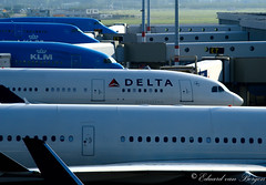 Business end(s) . . (Eduard van Bergen) Tags: downtime platform birds planes klm delta amsterdam airport schiphol holland flight flights departure arrival steward stewardess attendant airplane travel cabin hull fuselage crew aviation aircraft photography sony building sun flying pilots cockpit taxi hotesse inflight avion airhostess airline aeroplane landing tarmac american dutch blue white passengers airplanes flugzeuge waiting 747 boeing airbus hostess apron rotate outdoor 777 business uniform shift officer capt captain gates airlines epier america usa fliegerhorst leithorst hub mainport