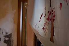 Hand of Blood (alex_2992) Tags: hand blood blut lost place farbe vorhang gruselig horror