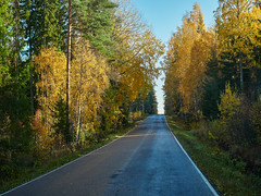Picturesque fall colors and beautiful autumn country road in Finland (Digikuvaaja) Tags: fallcolors autumncolors road autumn fall orange red landscapescenic season finland nordiccountries europe idyllic northern nature colorful background outdoor natural yellow park leaf travel forest beautiful environment leaves trees day color asphalt foliage sunlight golden light bright trip freedom speed rural line highway freeway drive scene motion adventure route