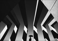 F_MG_1624-1-BW-Canon 6DII-Sigma 10-20mm-May Lee 廖藹淳 (May-margy) Tags: maymargy bw 黑白 人像 逆光 剪影 背影 雨傘 棚子 街拍 天馬行空鏡頭的異想世界 線條造型與光影 心象意象與影像 台灣攝影師 幾何構圖 點人 新北市 台灣 中華民國 fmg16241bw portrait backlighting silhouette umbrella canopy streetviewphotography linesformandlightandshadow mylensandmyimagination naturalcoincidencethrumylens humaningeometry humanelement taiwanphotographer newtaipeicity taiwan repofchina canon6dii sigma maylee廖藹淳 sigma1020mm