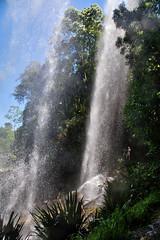 Behind Twin waterfalls (Tatters ✾) Tags: australia brisbane springbrook nationalpark waterfalls