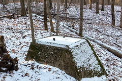 Water Tower Remnant (BRB1952) Tags: mayburystatepark northville michigan