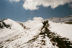Andean Traffic (IggyRox) Tags: peru andes mountains southamerica film 35mm hike trek nature beauty cuscoregion ausangatecircuit ausangate auzangate vilcanotarange canchisprovince pitumarcadistrict quispicanchiprovince ocongatedistrict cordilleravilcanota highaltitude pasopalomani llamas traffic up climb pass sky blue clouds sun light flare trail arrieros porters color