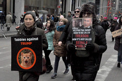 tabbies (greenelent) Tags: womensmarch streets protest women people newyork nyc notrump