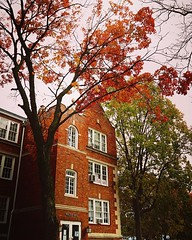 Autumn Color on a Historic Campus Stephens College, Columbia, Missouri There is always something special for me about walking a college campus — whether is is old and historic lime @stephenscollege or fairly modern like Cal Poly Pomona — where my son atte (dewelch) Tags: