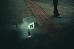 The Upside Down (Laser Kola) Tags: laserkola lasseerkola streetphotography reflections reflection woman leg highheels minimalism minimal minimalistic nightphotography nightlife urbanphotography bladerunner cyberpunk japan osaka upsidedown explorejapan canon canoneos5dmarkii canonef50mmf14usm 50mm primelens dreamy moody cinematic cinematicphotography