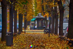 L'edicola del viale (Gianni Armano) Tags: edicola alessandria piemonte italia autunno foto gianni armano photo flickr