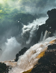 Gueule d'Iguazu (ThibaultPoriel) Tags: iguazu argentina argentine falls cataratas
