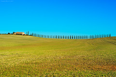 Tuscany Classic (Claudio_R_1973) Tags: tuscany hill farm casale cypress typical iconic countryside landscape grassland field sky sunny italy italia nature outdoor valdorcia
