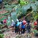 Hike to Rampanalgas Waterfall 2018