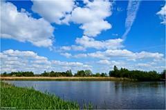 Heitelân - Homeland #63 (Hindrik S) Tags: fryslân friesland nederland netherlands sky loft luft lucht bluesky clouds wolken water blue blauw blau land landscape landschaft landschap panorama scenery scenic reflection reflectie refleksje wjerspegeling weerspiegeling 2018 leeuwarden ljouwert liwwadden sonyphotographing sony sonyalpha alpha amount minoltaamount a57 α57 slta57 sony1650mmf28dtssm sal1650