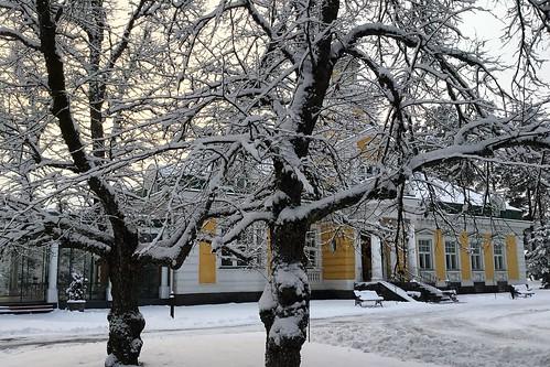 Luminen Hirvihaaran Kartano jouluna