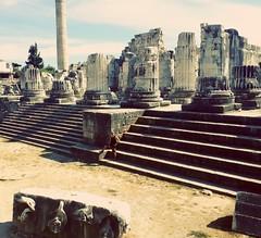 Apollon Tempel (zenziyan) Tags: didyma apollon ancient temple didim historical tempel xpam didymaion stairway step stone mythological medusa block archaeology architecture