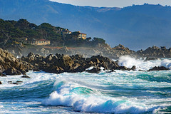 Kelly's 17-Mile Drive Favorites, Pacific Grove, CA 2018 (Northwest Lovers) Tags: california highway1 pacificgrove