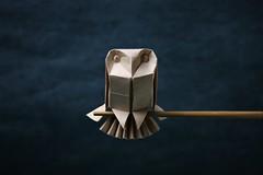 Barn Owl - Riccardo Foschi (pierreyvesgallard) Tags: origami owl riccardo foschi animal bird paper folding papercraft