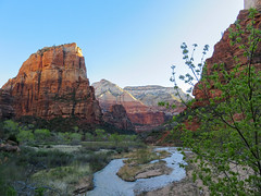 When We Remembered Zion (kobepeterson) Tags: zion national park utah
