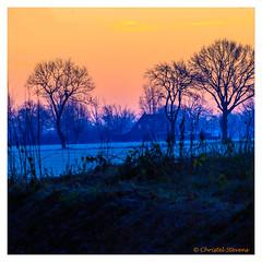 Sunrise in winter (cstevens2) Tags: antwerpenprov belgique belgium belgië europe flanders flandre goldenhour goudenuurtje hetziel kalmthout landscape landschap morning ochtend sunrise vlaanderen zonsopkomst bomen ice ijs trees winter zonsopgang