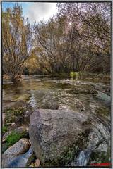 2018_11_27-4 (jrgenet) Tags: manzanareselreal ríomanzanares river naturaleza paisaje comunidaddemadrid spain españa