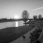 Herbst-Neckarwiese-002