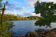 Autumn day on the river. (Bessula) Tags: bessula nature river tree autumn fall sky riverside view scene landscape scenery stoneshore shrubs bushes field forest sweden göta coth5