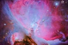 The Great Orion Nebula (Messier 42) (Sky Watchers Association of North Bengal - SWAN - ) Tags: nebula orion nebulae star sky starry dark light nikon celestron d610 edgehb 14inch c14 night astrophotography astro demarians messier m42 astrometrydotnet:id=nova3109549 astrometrydotnet:status=solved