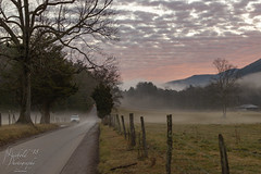 Smoky Sunrise (Michael Allen Siebold (Getty Images Contributor)) Tags: tennessee unitedstates us landscape winter outside sky nature light clouds trees car