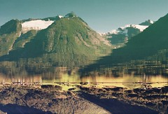 (mari-ann curtis) Tags: norway summer 2017 travel landscape colour film 35mm hjelle mountains fjord snow trees turquoise light shadow nostalgia memories