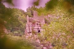 110 - Ardèche - Vogüé la chapelle en ruine (paspog) Tags: france ardèche vogüé août august 2018 ruine reuines ruins ruinen chapel kapelle