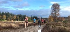 haarlerbergloop 10 km (39)