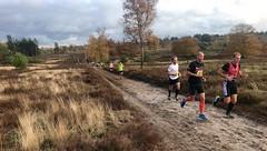haarlerbergloop 10 km (28)