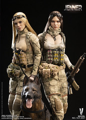VERYCOOL TOYS VCF-2037 ABC A-TACS FG Women Soldier-JENNER+German Shepherd Dog Set - 03 (Lord Dragon 龍王爺) Tags: 16scale 12inscale onesixthscale actionfigure doll hot toys verycool female