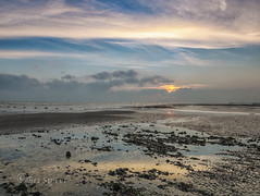 Golden glympse (Through Bri`s Lens) Tags: sussex worthingpier lowtidereflection tide seaweed seagulls winter beach rocks brianspicer canon5dmk3 canon1635f4 leefilters